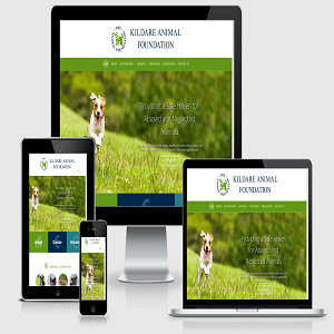 [عکس: Kildare-Animal-Foundation-Charity-Website-Design.png]