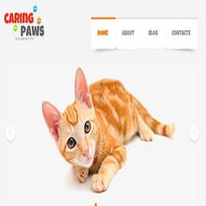 طراحی سایت فروش حیوانات خانگی